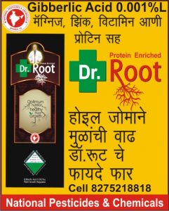 dr_root_with_gibberellic_acid