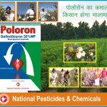 Poloron Sticker design